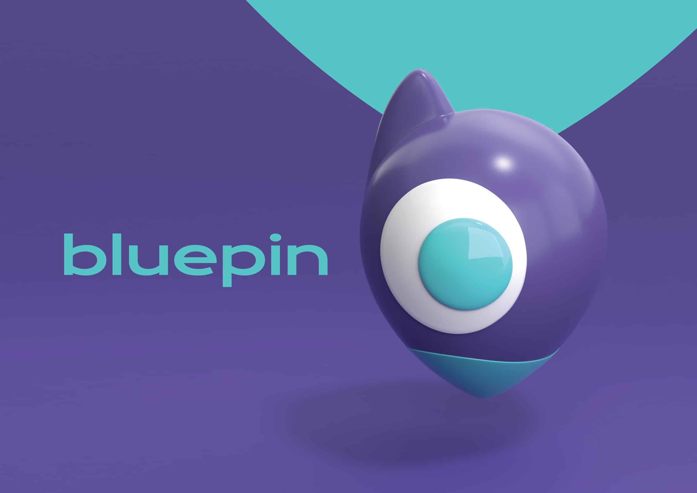 Bluepin   Branding design